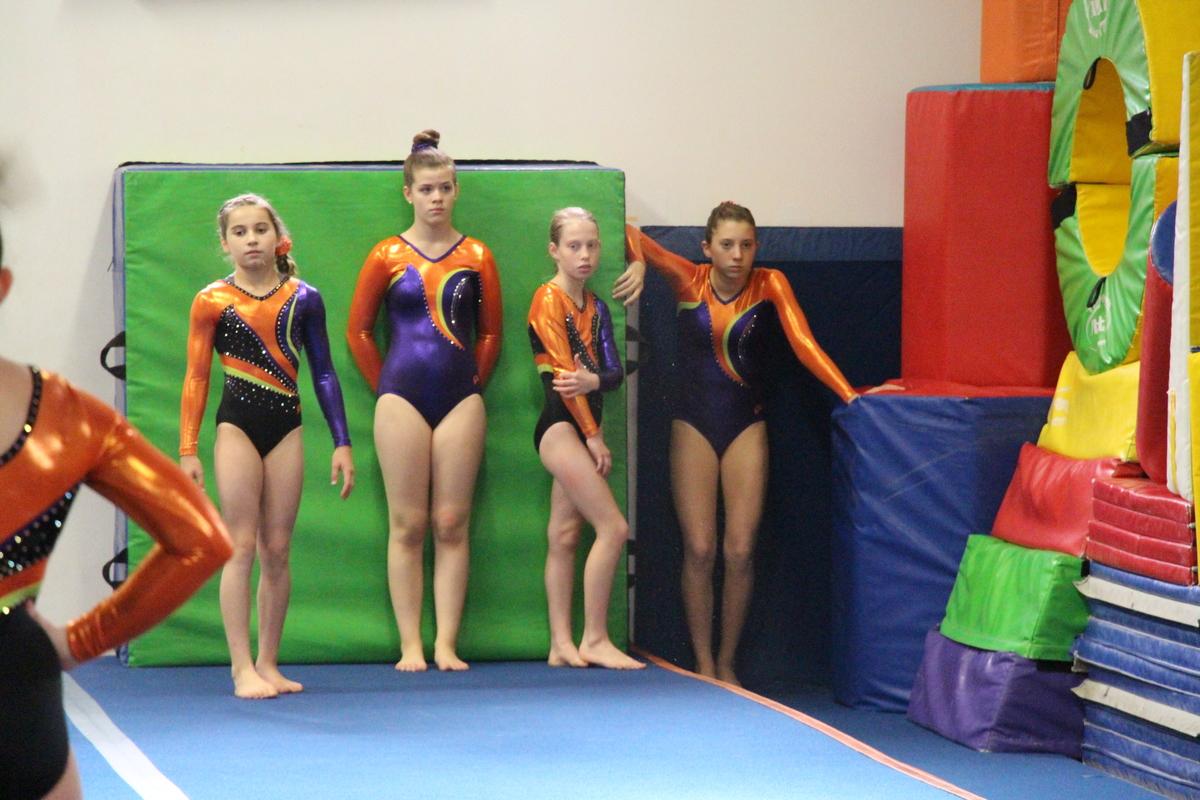 mega gymnastics meet 2015 results nascar